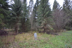 Lääne-Virumaa, Haljala vald, Võsu, Sääse 23