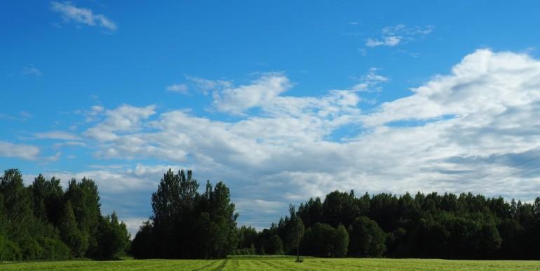 Põlvamaa, Räpina vald, Veriora, Mõtsavaara küla, Vainukäo