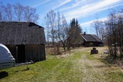 Pärnumaa, Häädemeeste vald, Krundiküla, Kirsipuu