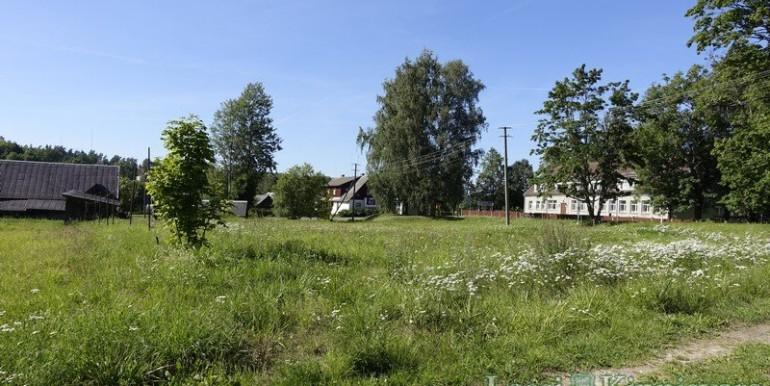 Valgamaa, Tõrva vald, Ala, Savisaare